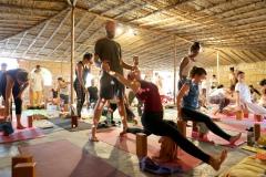 09-yoga-vini-teacher-training-rishikesh